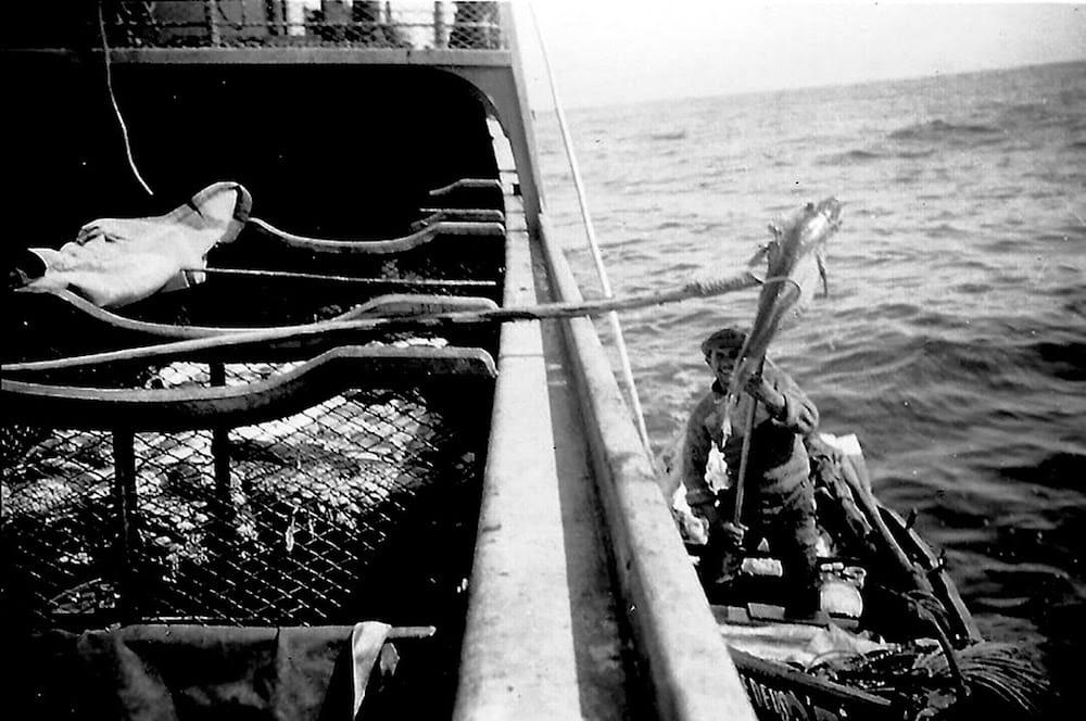 fishermen trowing codfish inside boat