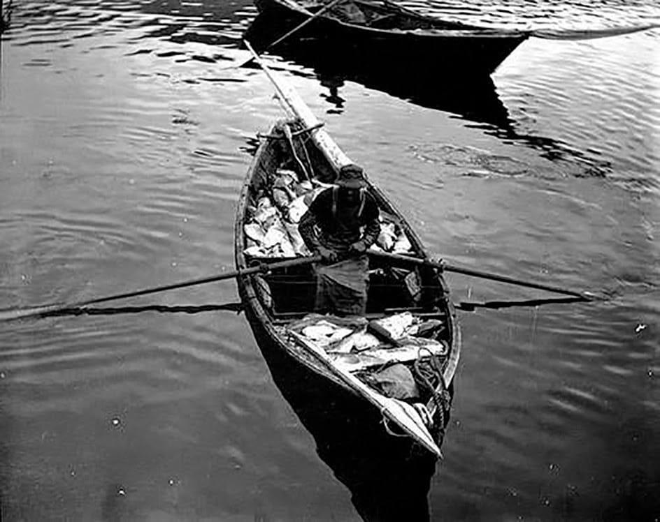 portuguese fishermen small boat loaded fresh codfish