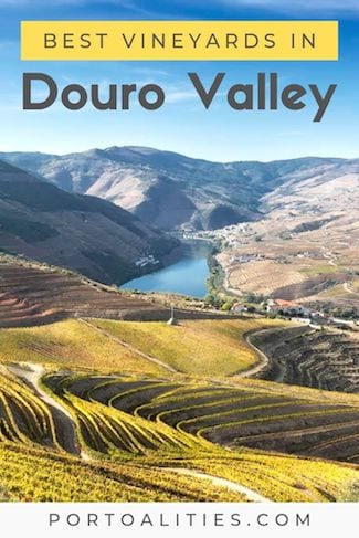 best vineyards douro valley portugal