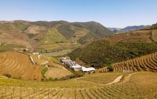 melhores vinícolas douro vinhateiro