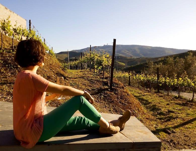 quinta do vallado melhores vinicolas do douro