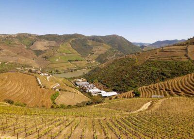 top vineyards douro valley