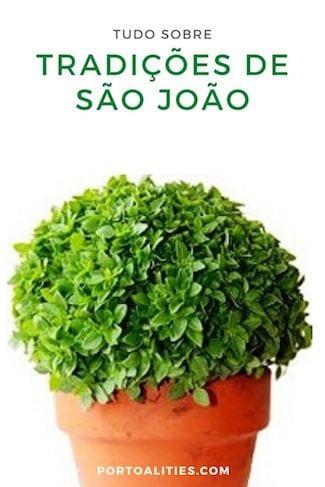 manjerico sao joao portugal