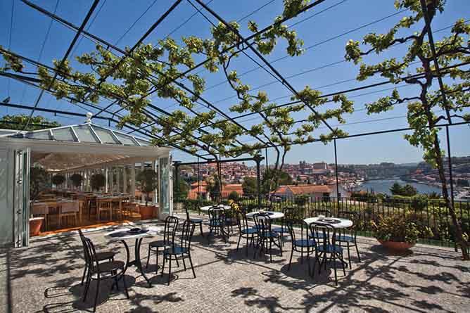 vinum vinho rooftop porto