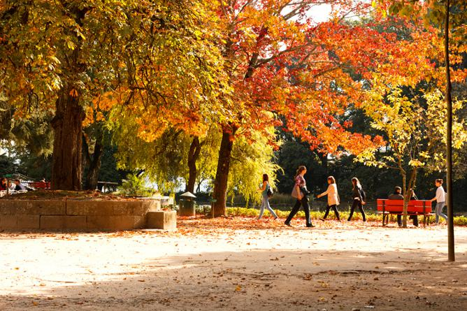 outono jardins palacio cristal porto