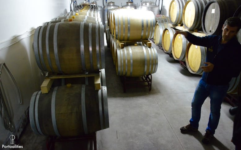 green wine portugal production process