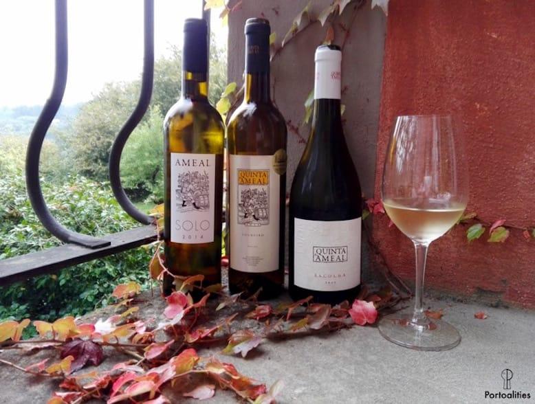green wine portugal quinta ameal