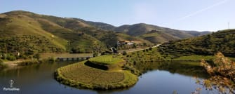 tour douro valley