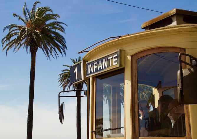 tram ride porto palm tree