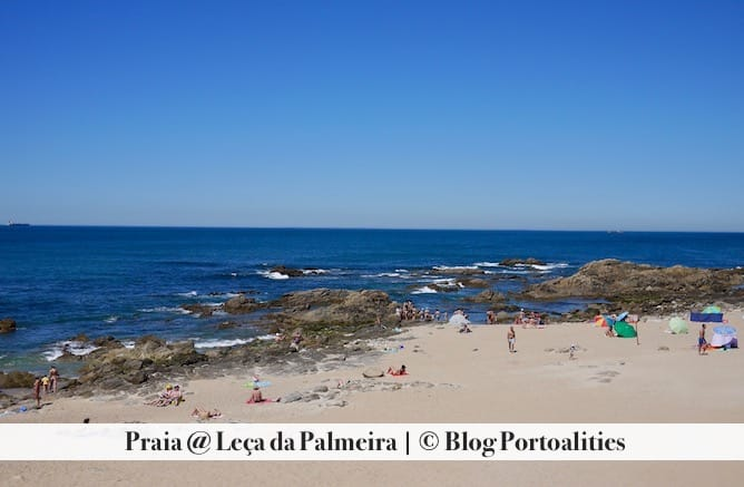 praia porto leca palmeira