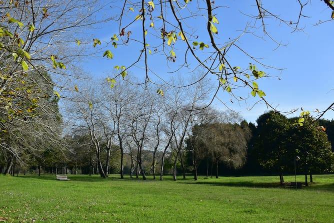parque da cidade porto