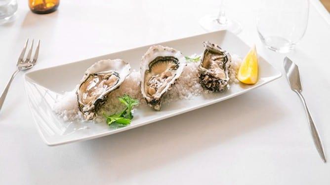 fresh oysters ostras coisas porto