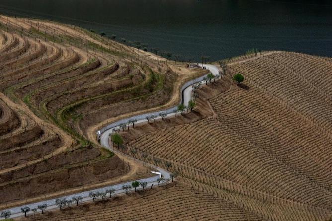 douro valley curvy roads
