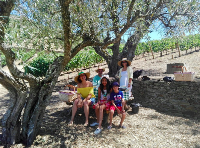 family activity picnic douro valley