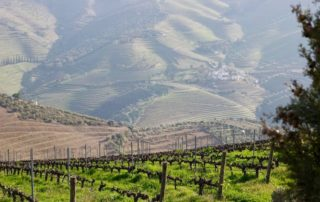 how plan trip douro valley