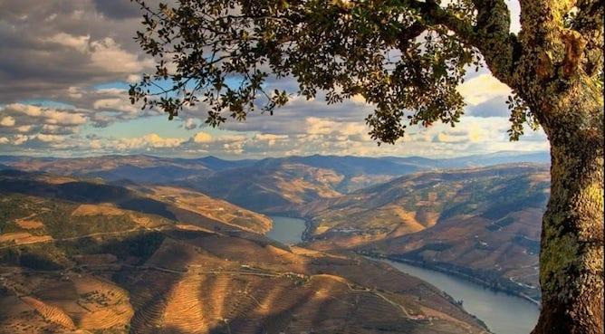 sao leonardo galafura viewpoint douro valley