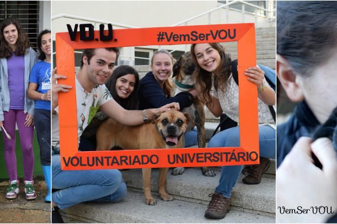 voluntariado universitario vou pelos animais