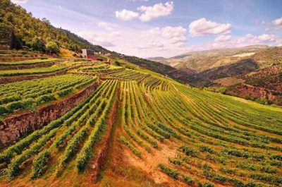 douro valley for families