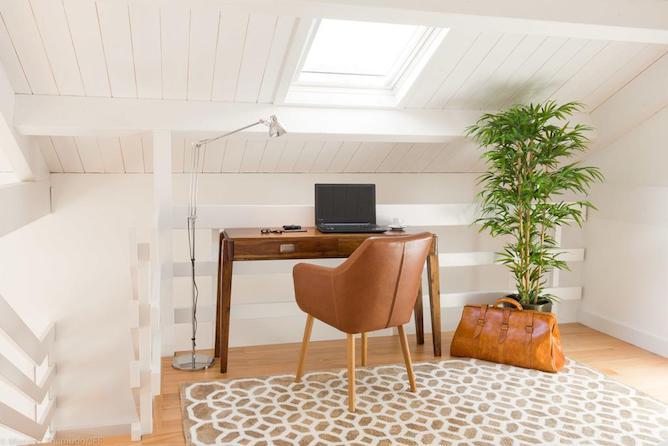 small desk plant