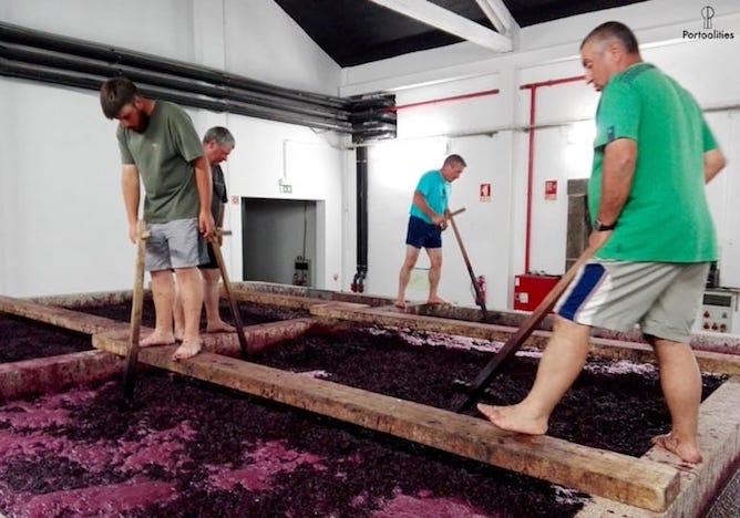 men crushing grapes