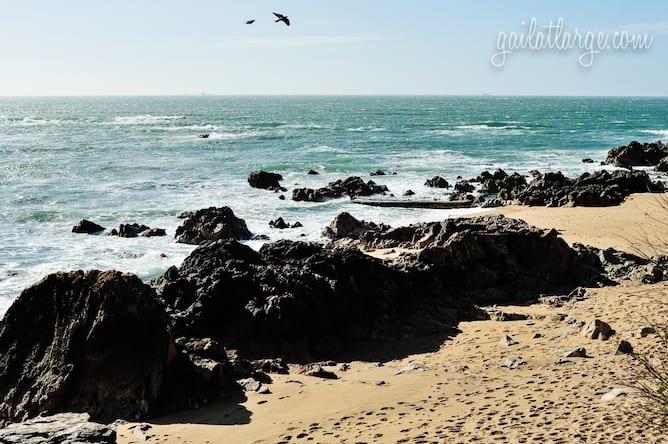 praia ingleses o que fazer na foz