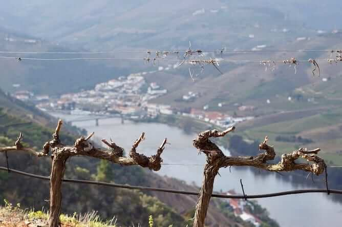 best time to visit douro valley
