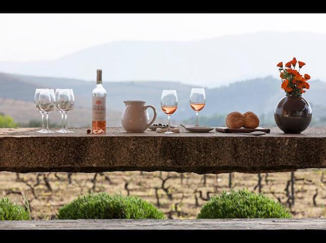 prova vinhos casas faisca