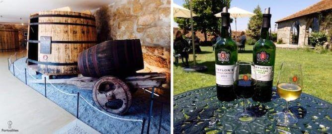 taylors melhores caves vinho porto