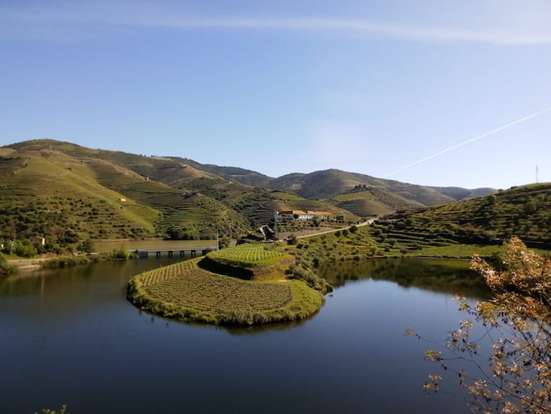 view from quinta do tedo winery douro valley