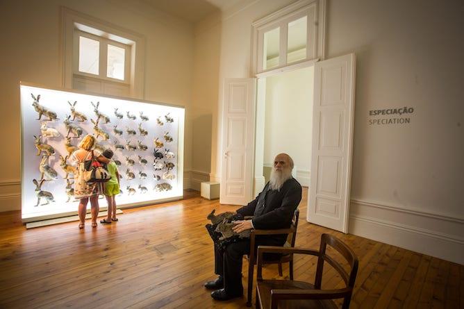 galeria biodiversidade museu criancas porto