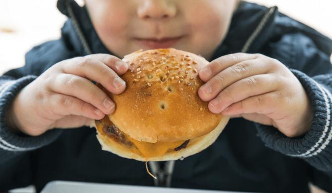 miudo comer hamburguer degema porto