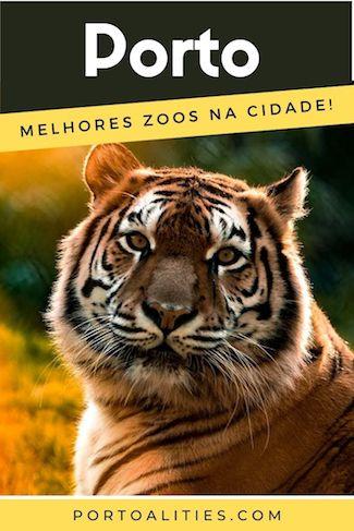 jardins zoologicos perto do porto tigre