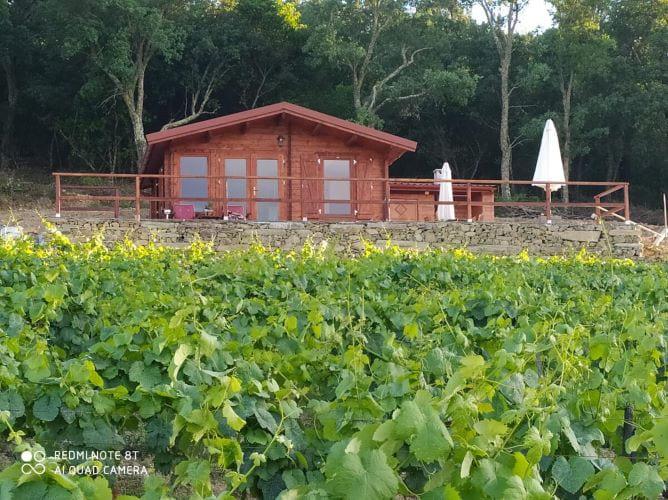 casas vinhas velhas bungalows douro