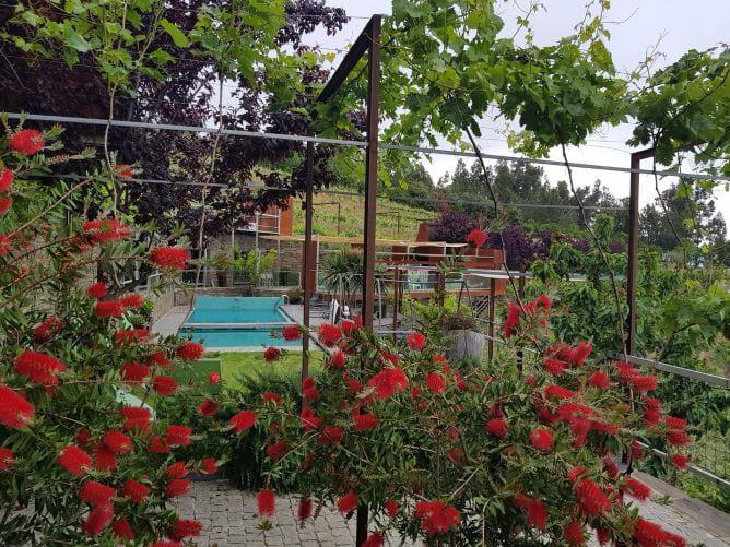 piscina flores casas campo vila marim