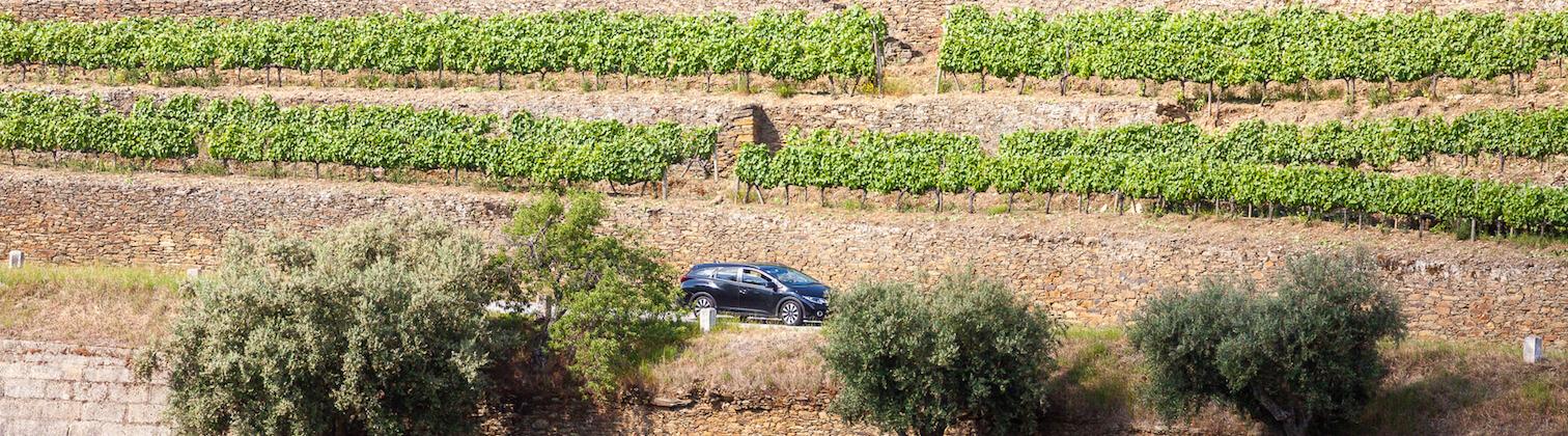 private driver douro valley