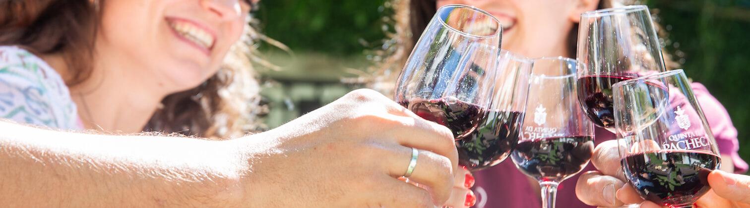 prova vinhos quinta pacheca douro