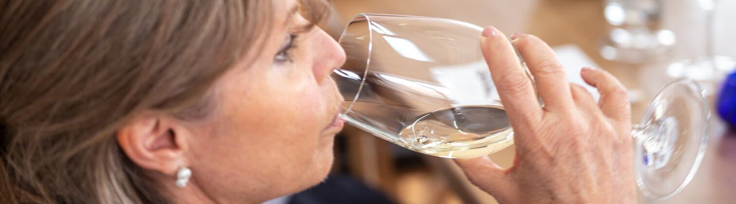 wine tasting douro valley